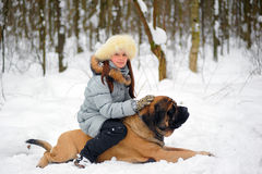 Girl with an English Mastiff Royalty Free Stock Images