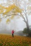 Girl enjoying beautiful autumn forest on foggy morning. Royalty Free Stock Image