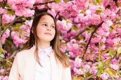 Girl enjoying cherry blossom or sakura. Cute child enjoy warm spring day. Aromatic blossom concept. Girl tourist posing. Near sakura. Tender bloom. Child on stock photos