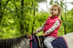Girl enjoying horseback riding in the woods, young pretty girl with blond curly hair on a horse with backlit leaves. Behind, freedom, joy, movement, outdoor royalty free stock photos