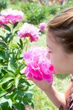 Girl enjoying of pink Minuet peony smell in formal garden. Pretty teenage girl smelling bouquet of pink rich blossoming Minuet peony flowers in sunny green park Royalty Free Stock Image
