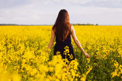 Girl enjoying rapeseed blooming on yellow meadow Stock Image