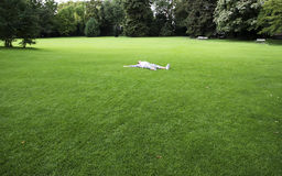 Girl enjoying a relaxing day. Relaxing day in nature, girl lying on grass field (Park in Zurich, Switzerland Royalty Free Stock Image