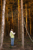 The girl at the entrance to a dense forest, at sunset Royalty Free Stock Photos