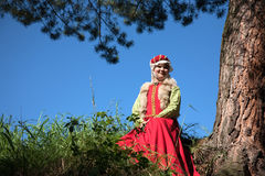 Girl in european historical clothing Royalty Free Stock Photo