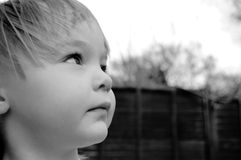 Girl eve. This is a photo of my first daughter looking thoughtfuly at a bird Stock Photos