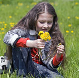 Girl examines yellow dandelions Stock Photography