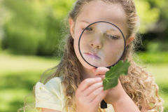 Girl examining leaf with magnifying glass at park Stock Photography
