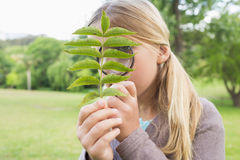 Girl examining leaves with magnifying glass at park Royalty Free Stock Images