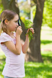 Girl examining leaves with a magnifying glass at park Stock Photography