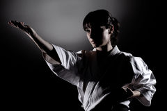 Girl exercising karate Royalty Free Stock Photography