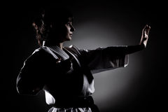 Girl exercising karate Stock Photos