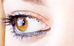 Girl eye Royalty Free Stock Image