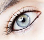 Girl eye Royalty Free Stock Photography