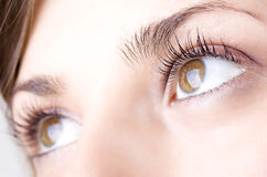 Girl eye Stock Photography