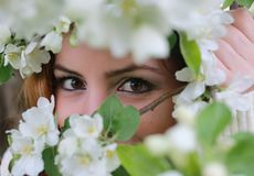 Girl eye behind tree flower Stock Photography