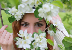 Girl eye behind tree flower Stock Images