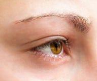 Girl eye close-up. Royalty Free Stock Images