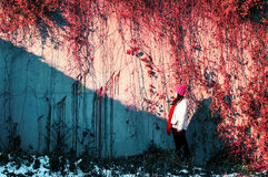 Girl face sunshine below autumn wall Royalty Free Stock Images