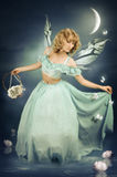 A girl is a fairy Stock Photography