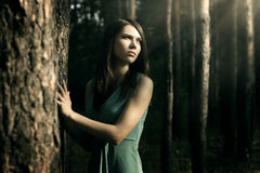 Girl in fairy forest. Dark background royalty free stock images