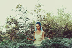 Girl in fairy forest Stock Images