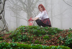Girl in a fairy forest. With red lantern Royalty Free Stock Photo