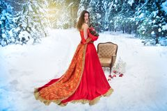A girl in a fairy-tale image of a queen poses in a snow-covered winter forest. Royalty Free Stock Photos