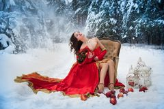 A girl in a fairy-tale image of a queen poses in a snow-covered winter forest. Stock Images