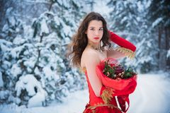 A girl in a fairy-tale image of a queen poses in a snow-covered winter forest. Long red dress, bouquet of fruits, red apples. Stock Photography