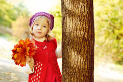 Girl in fall Royalty Free Stock Photography