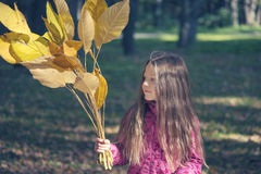 Girl with fall leafs Stock Images