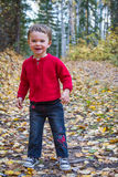 Girl in fall leaves Royalty Free Stock Images