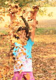 Girl in falling leaves Stock Photo