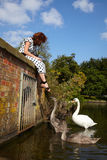 Girl and a family of swans Stock Photography