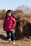 Girl at a farm. Girl at the farm during the fall Stock Photography