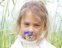 Girl at the farmer's field. Little girl at the farmer's field with grass growing sniffing cornflowers Stock Images