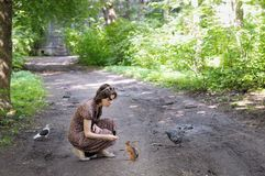 Girl feed funny little squirrel Royalty Free Stock Photography