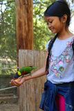 Girl feeding bird Royalty Free Stock Images