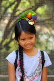 Girl feeding bird. Girl feeding a vibrant colorful parrot apple Stock Photos