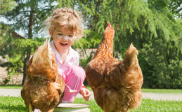 Girl feeding chickens Royalty Free Stock Images