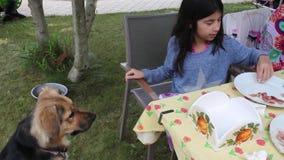 Girl Feeding Dog stock footage