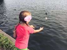 Girl feeding the ducks Royalty Free Stock Photos