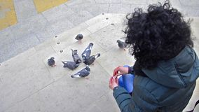 Girl feeding flock of pigeons on town square stock video