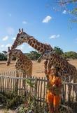 Girl Feeding Giraffe at Zoo Royalty Free Stock Photos
