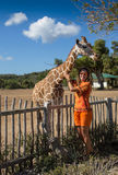 Girl Feeding Giraffe at Zoo Stock Photography