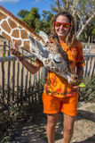 Girl Feeding Giraffe at Zoo Stock Images