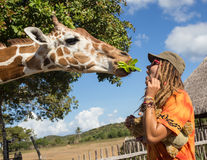 Girl Feeding Giraffe at Zoo Royalty Free Stock Photography