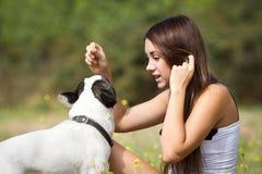 Girl feeding her dog Stock Images