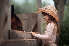 Girl feeding her horse. Cute girl feeding her horse in paddock Stock Images